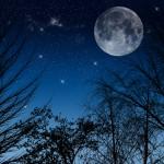 韓国ドラマ「太陽を抱く月」