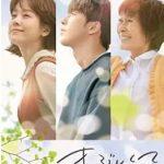 韓国ドラマ「まぶしくて 私たちの輝く時間」のあらすじ